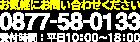 0877-58-0133